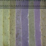 Different types of hand made paper with daffodill fibre inclusions